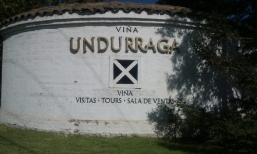 Viña Undurraga Chile