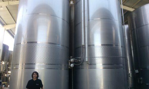 Undurraga vineyard - stainless steel fermentation vessels Chile