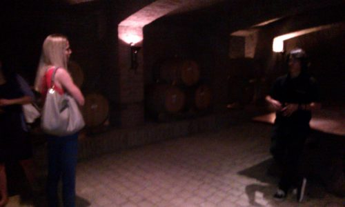 Legendary Undurraga vineyard Chile