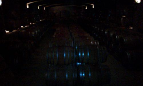 Undurraga vineyard wine barrels Chile