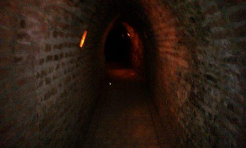 Undurraga vineyard - Cave Chile