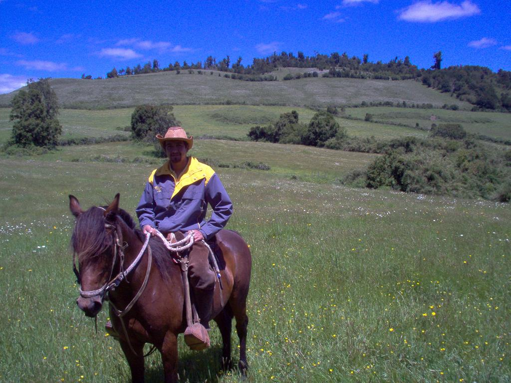 Horse riding in Chile