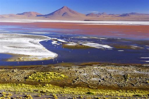 Colorada Lagoon, Uyuni Salt flat lake Bolivia