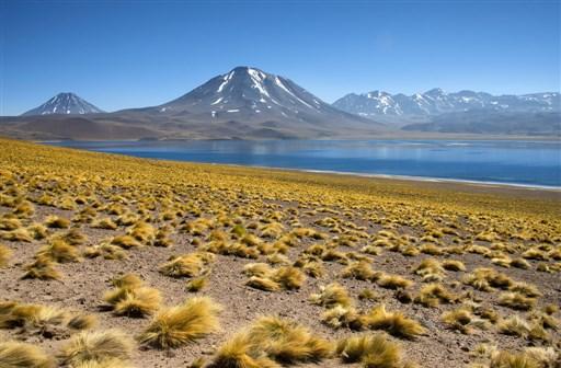 Miscanti volcano and lagoon, Atacama Chile